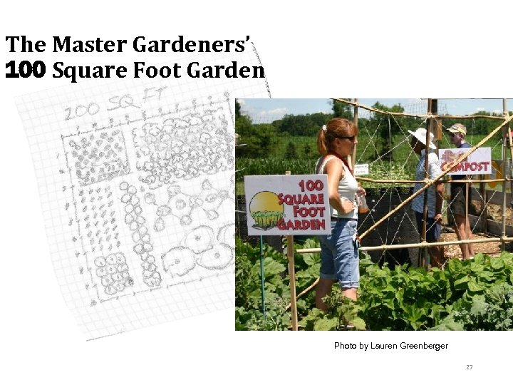 The Master Gardeners' 100 Square Foot Garden Photo by Lauren Greenberger 27