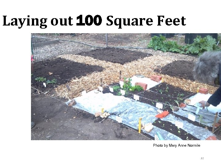 Laying out 100 Square Feet Photo by Mary Anne Normile 32