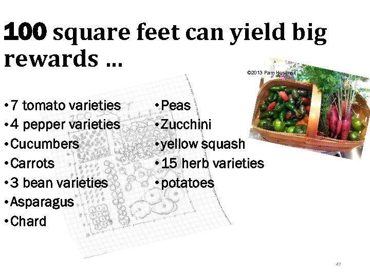 100 square feet can yield big rewards … © 2013 Pam Hosimer • 7