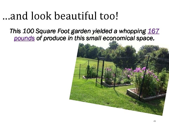 …and look beautiful too! This 100 Square Foot garden yielded a whopping 167 pounds