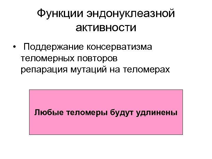 Функции эндонуклеазной активности • Поддержание консерватизма теломерных повторов репарация мутаций на теломерах Любые теломеры
