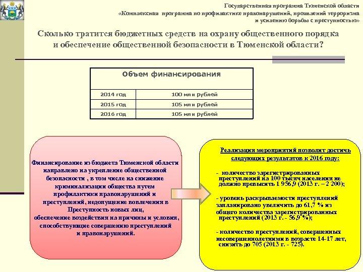 Государственная программа Тюменской области «Комплексная программа по профилактике правонарушений, проявлений терроризма и усилению борьбы