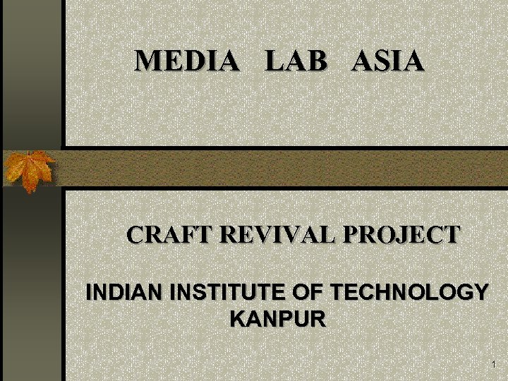 MEDIA LAB ASIA CRAFT REVIVAL PROJECT INDIAN INSTITUTE OF TECHNOLOGY KANPUR 1