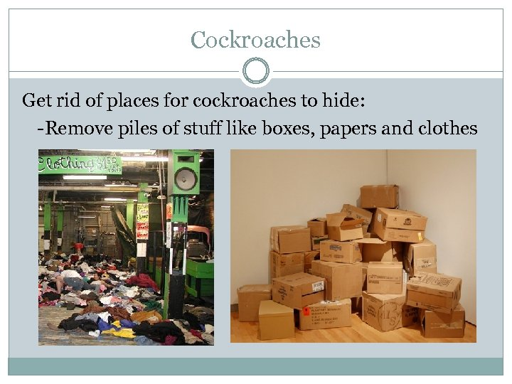 Cockroaches Get rid of places for cockroaches to hide: -Remove piles of stuff like