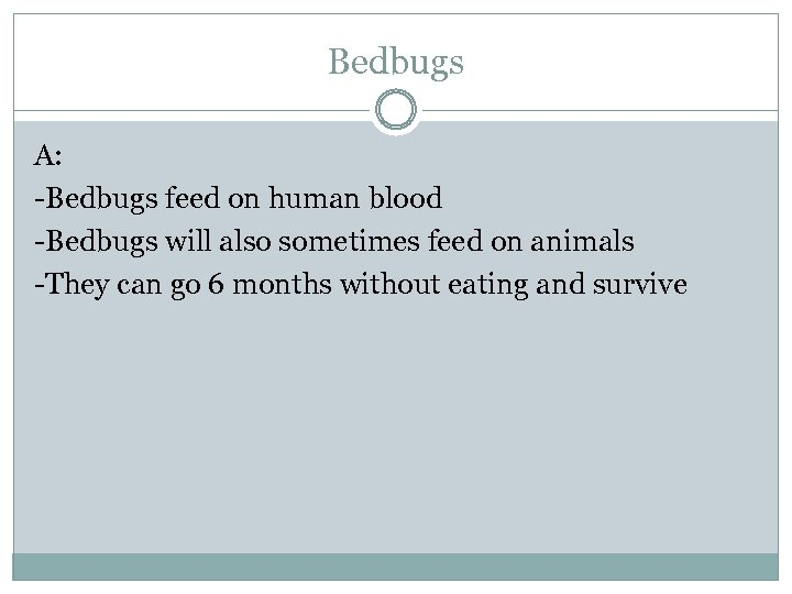 Bedbugs A: -Bedbugs feed on human blood -Bedbugs will also sometimes feed on animals