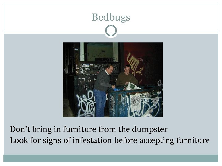 Bedbugs Don't bring in furniture from the dumpster Look for signs of infestation before