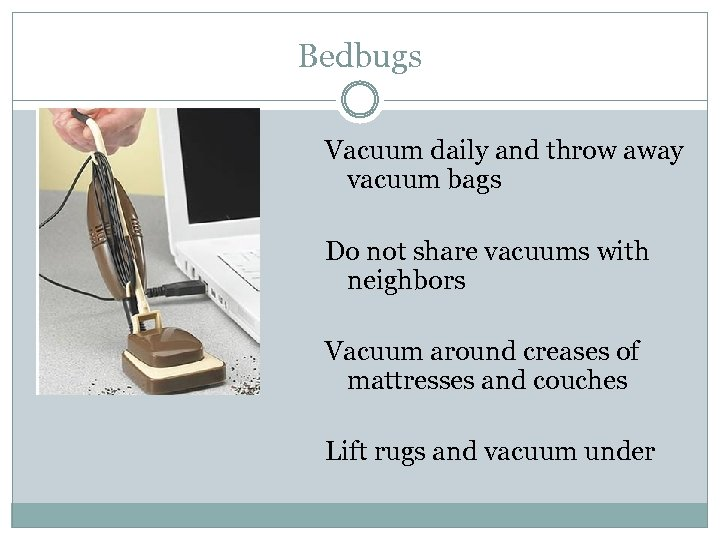 Bedbugs Vacuum daily and throw away vacuum bags Do not share vacuums with neighbors