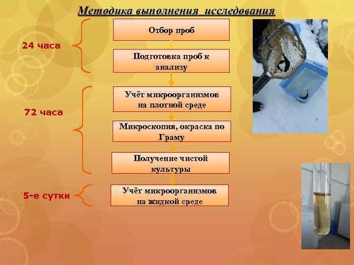 Методика выполнения исследования Отбор проб 24 часа Подготовка проб к анализу 72 часа Учёт