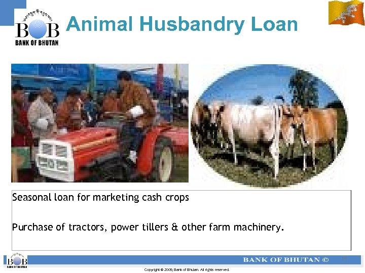 Animal Husbandry Loan Seasonal loan for marketing cash crops Purchase of tractors, power tillers
