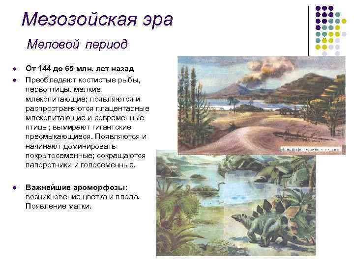 Мезозойская эра Меловой период l l l От 144 до 65 млн. лет назад