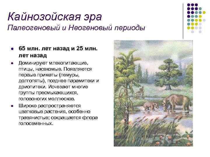 Кайнозойская эра Палеогеновый и Неогеновый периоды l 65 млн. лет назад и 25 млн.