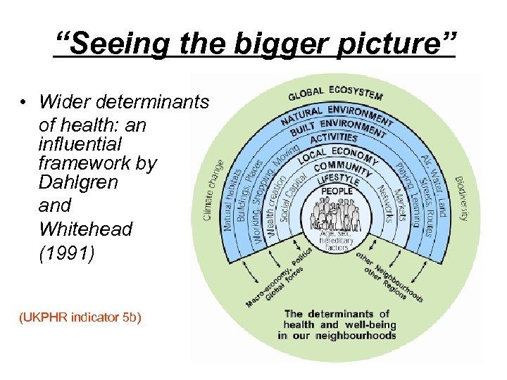 """Seeing the bigger picture"" • Wider determinants of health: an influential framework by Dahlgren"
