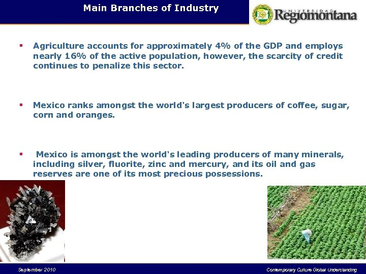Main Branches of Industry § Agriculture accounts for approximately 4% of the GDP and