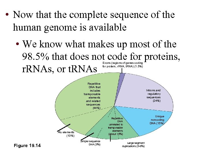 • Now that the complete sequence of the human genome is available •