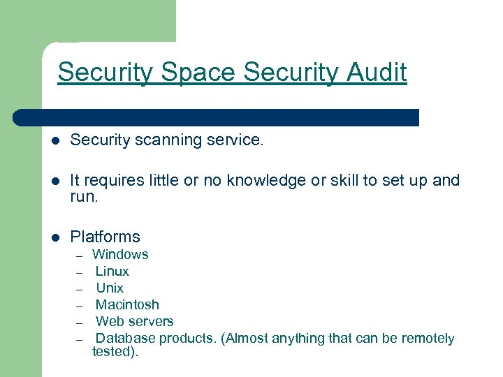 Security Space Security Audit l Security scanning service. l It requires little or no
