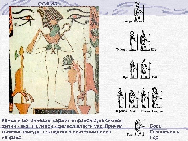 ОСИРИС Каждый бог эннеады держит в правой руке символ жизни - анх, а в
