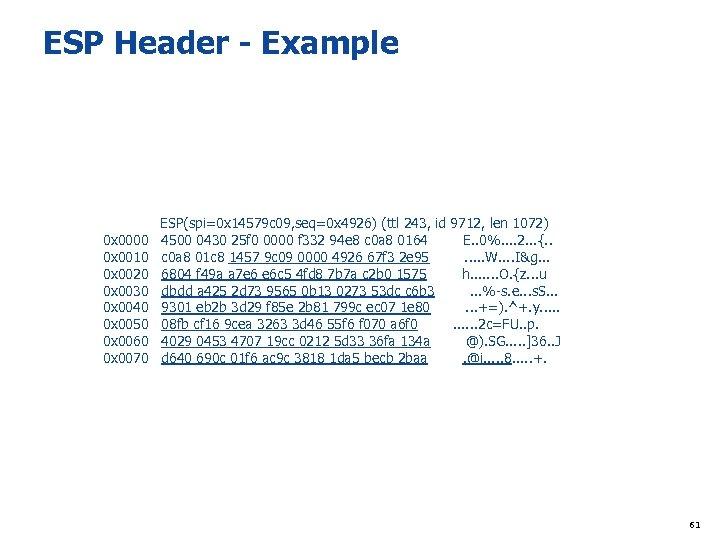 ESP Header - Example ESP(spi=0 x 14579 c 09, seq=0 x 4926) (ttl 243,