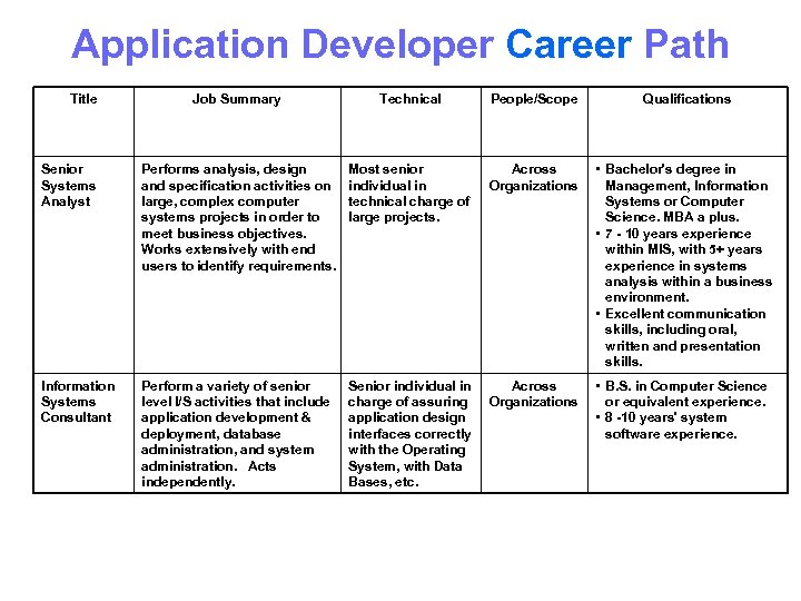 Application Developer Career Path Title Job Summary Technical People/Scope Qualifications Senior Systems Analyst Performs