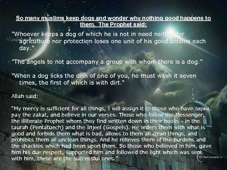 So many muslims keep dogs and wonder why nothing good happens to them. The