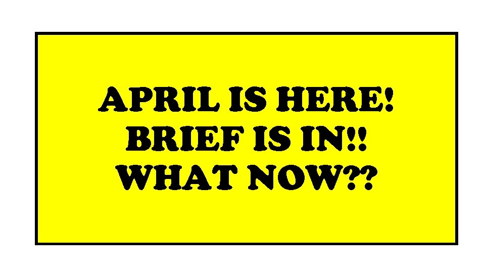 APRIL IS HERE! BRIEF IS IN!! WHAT NOW? ?