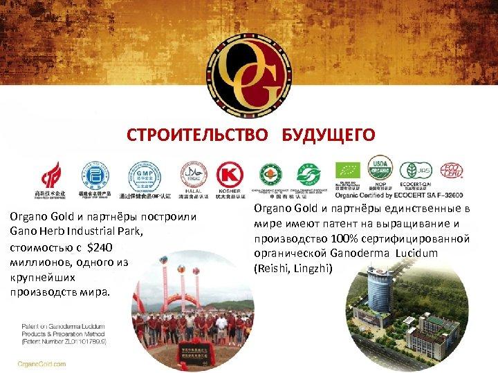 СТРОИТЕЛЬСТВО БУДУЩЕГО Organo Gold и партнёры построили Gano Herb Industrial Park, стоимостью с $240