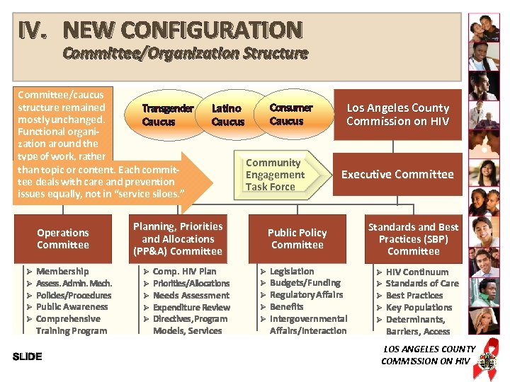 IV. NEW CONFIGURATION Committee/Organization Structure Committee/caucus structure remained Transgender mostly unchanged. Caucus Functional organization
