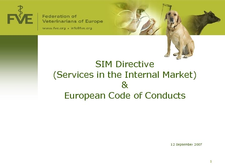 SIM Directive (Services in the Internal Market) & European Code of Conducts 12 September