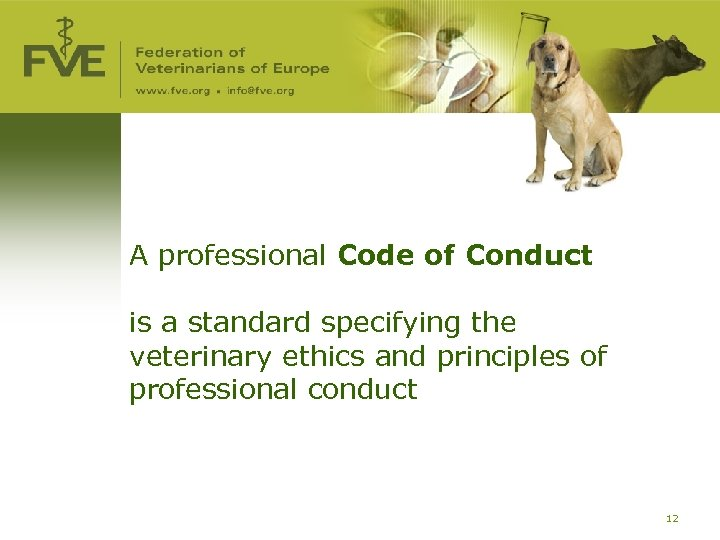 A professional Code of Conduct is a standard specifying the veterinary ethics and principles