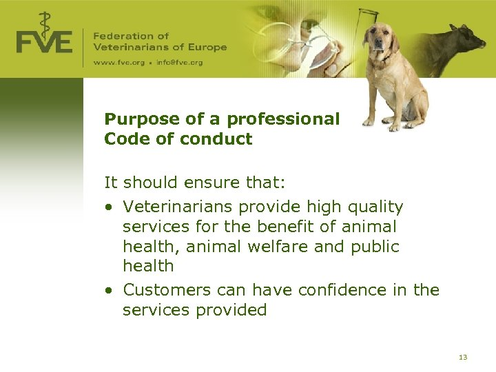 Purpose of a professional Code of conduct It should ensure that: • Veterinarians provide