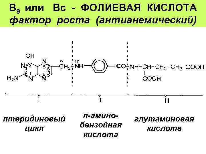 В 9 или Вс - ФОЛИЕВАЯ КИСЛОТА фактор роста (антианемический) птеридиновый цикл п-аминоглутаминовая бензойная