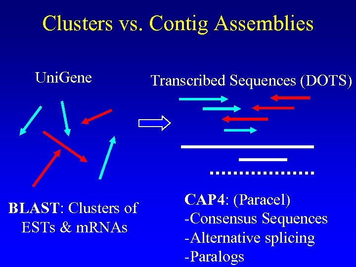 Clusters vs. Contig Assemblies Uni. Gene BLAST: Clusters of ESTs & m. RNAs Transcribed