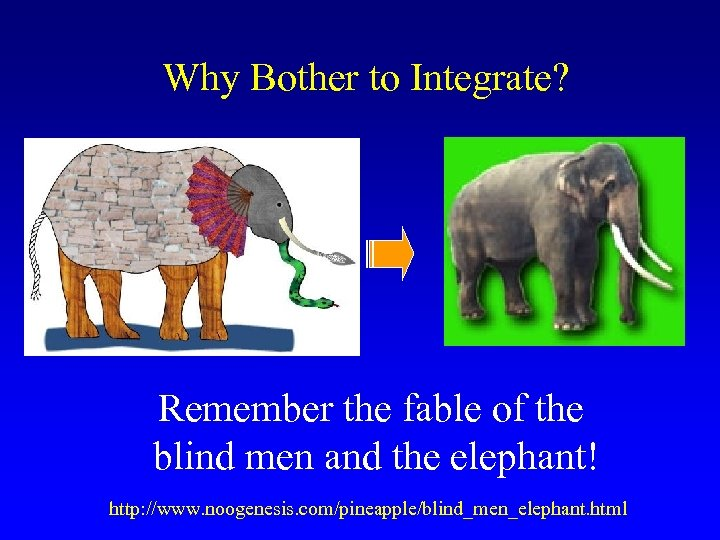 Why Bother to Integrate? Remember the fable of the blind men and the elephant!