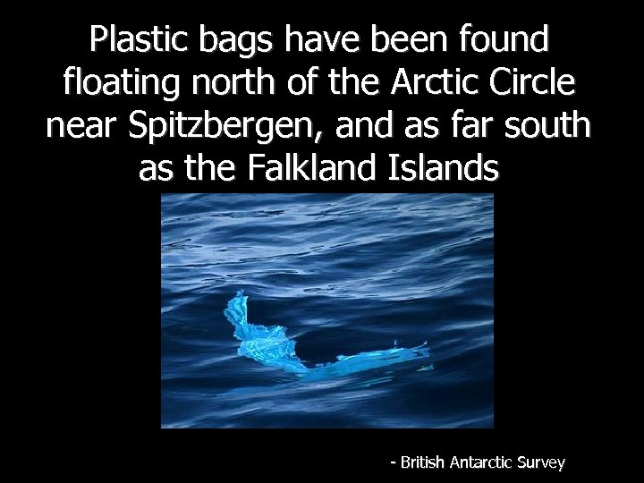 Plastic bags have been found floating north of the Arctic Circle near Spitzbergen, and