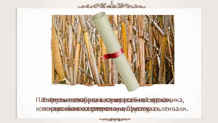 Папирус изготавливался из стеблей тростника, Египтяне изобрели папирус — материал, Листы папируса сворачивали в