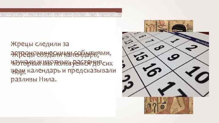 Жрецы следили за астрономическими событиями, Жрецы создали календарь, изучали животных, растения, которым мы пользуемся