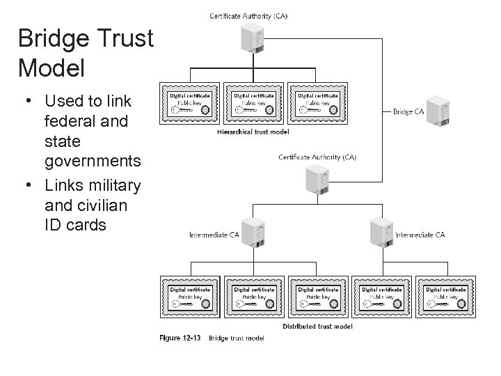 Bridge Trust Model • Used to link federal and state governments • Links military
