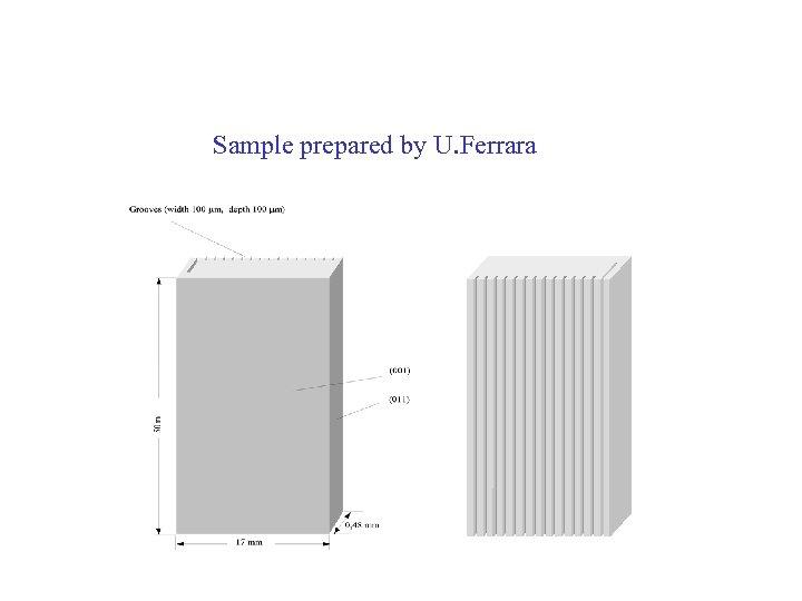 Sample prepared by U. Ferrara