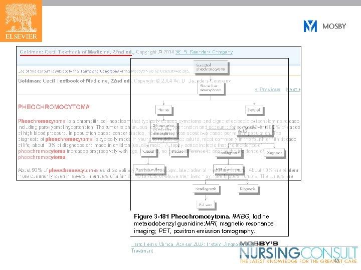 Figure 3 -181 Pheochromocytoma. IMIBG, Iodine metaiodobenzyl guanidine; MRI, magnetic resonance imaging; PET, positron