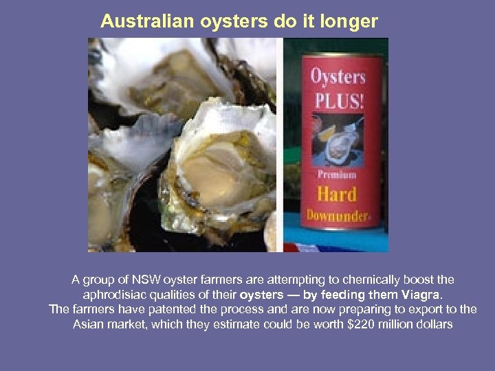 Australian oysters do it longer A group of NSW oyster farmers are attempting to