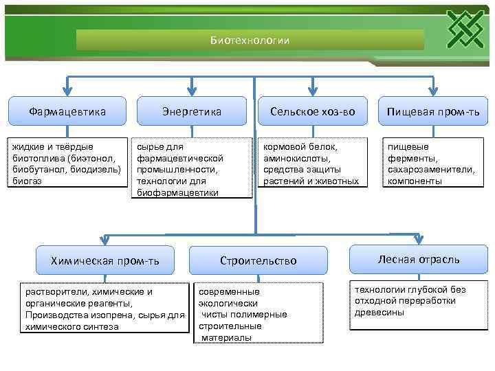 Биотехнологии Фармацевтика жидкие и твёрдые биотоплива (биэтонол, биобутанол, биодизель) биогаз Энергетика сырье для фармацевтической