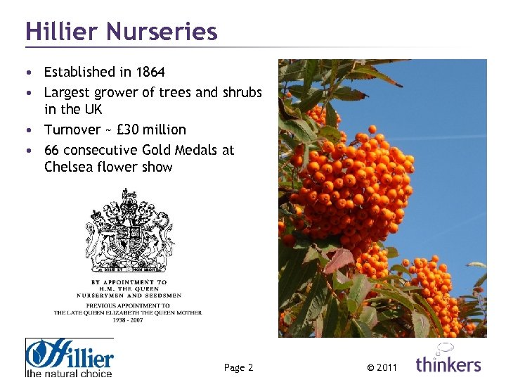 Hillier Nurseries • Established in 1864 • Largest grower of trees and shrubs in