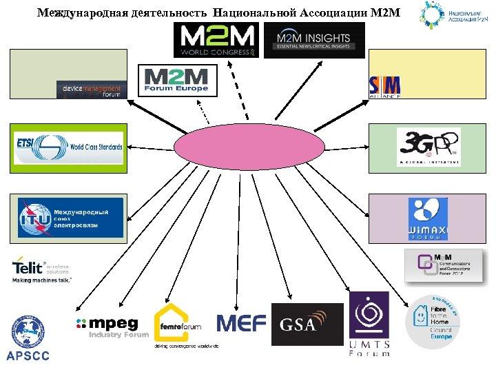 Международная деятельность Национальной Ассоциации М 2 М
