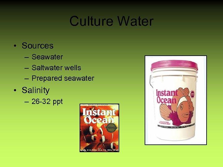 Culture Water • Sources – Seawater – Saltwater wells – Prepared seawater • Salinity