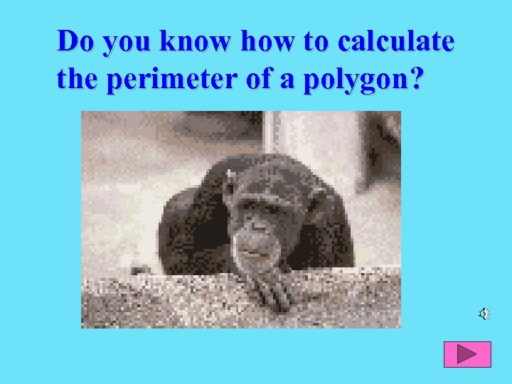 Do you know how to calculate the perimeter of a polygon?