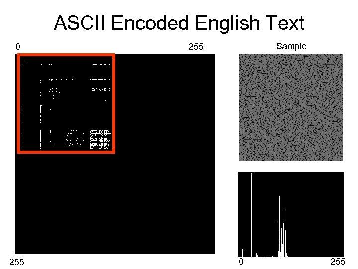 ASCII Encoded English Text 0 255 Sample 255 0 255