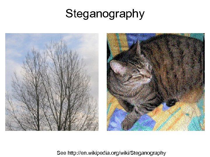 Steganography See http: //en. wikipedia. org/wiki/Steganography