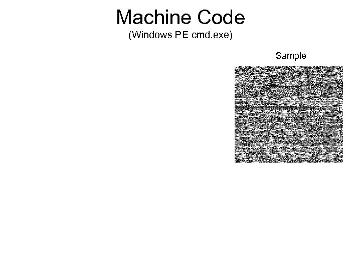 Machine Code (Windows PE cmd. exe) Sample