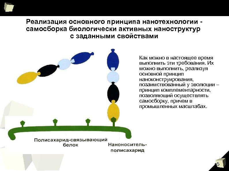 Реализация основного принципа нанотехнологии самосборка биологически активных наноструктур с заданными свойствами Как можно в