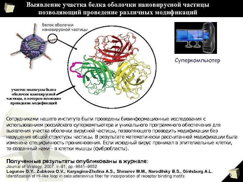 Выявление участка белка оболочки нановирусной частицы позволяющий проведение различных модификаций белок оболочки нановирусной частицы