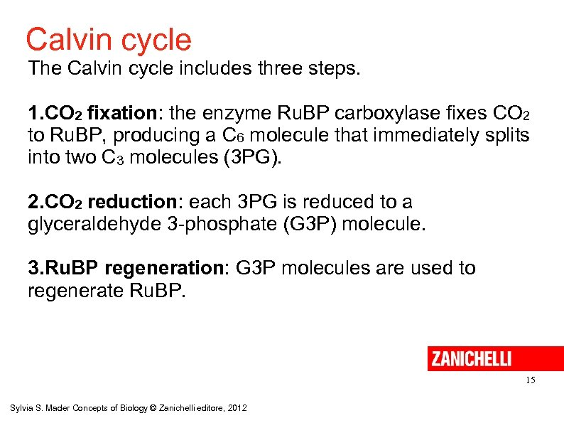 Calvin cycle The Calvin cycle includes three steps. 1. CO 2 fixation: the enzyme